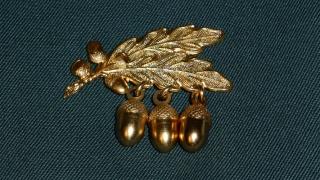 3 goldene Plaketten (Eicheln)