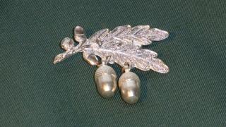 2 silberne Plaketten (Eicheln)
